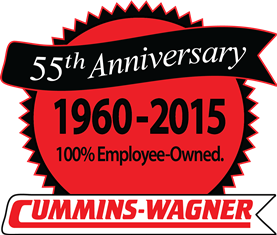 2015 CW anniversary logo